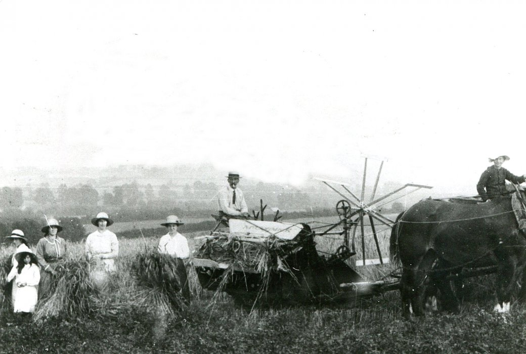 The Walker family haymaking at Rectory Farm