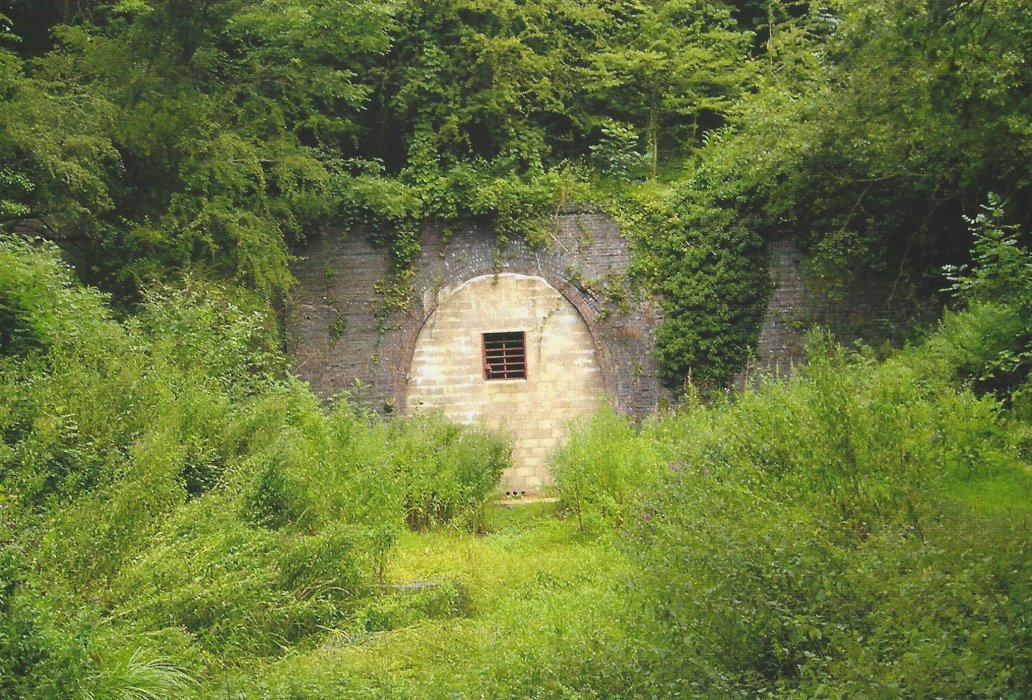 Horspath tunnel now bricked up, and a haven for bats