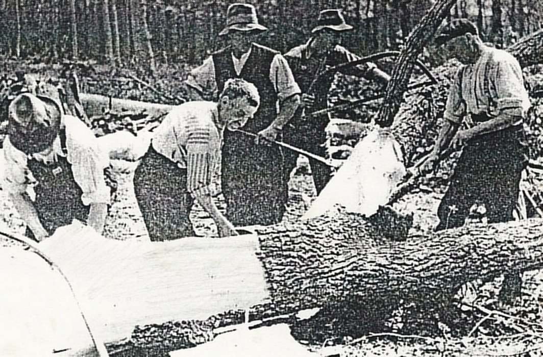General picture of bark, which was an important commodity for the tanning business, being stripped. James Robbins of College Farm records many transactions. In 1849, a load of 114cwt. was worth £2.1.0. and another, in 1855 was worth £3.6.6. We do not know for whom it was destined but the tannery opposite would have used large quantities of oak bark and could have been a customer.