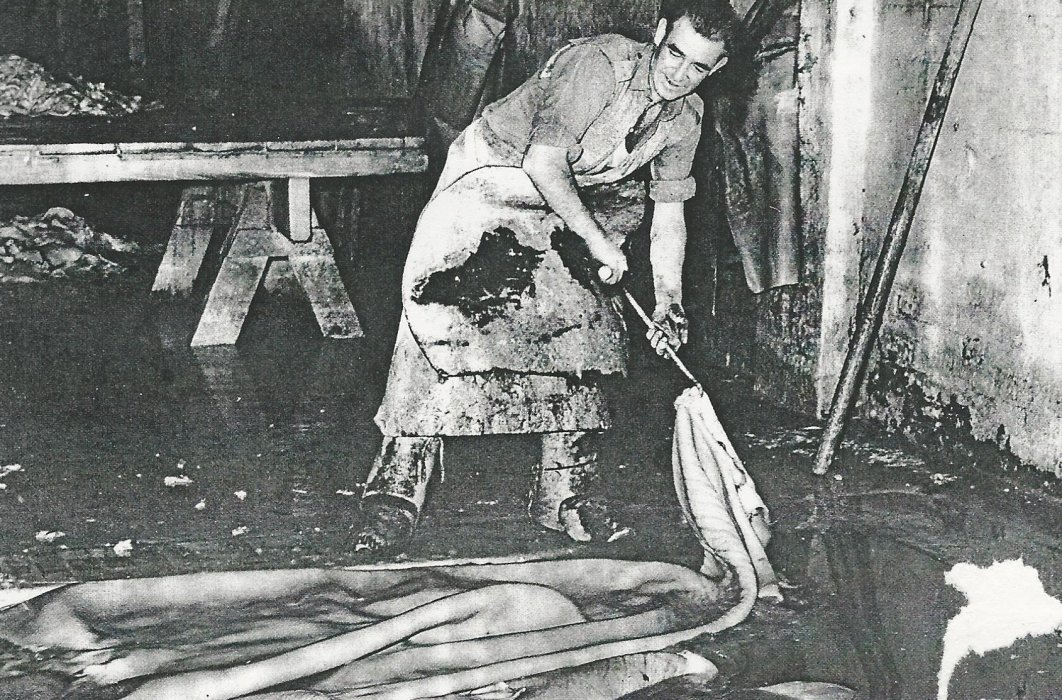 General picture of a tanner preparing hides