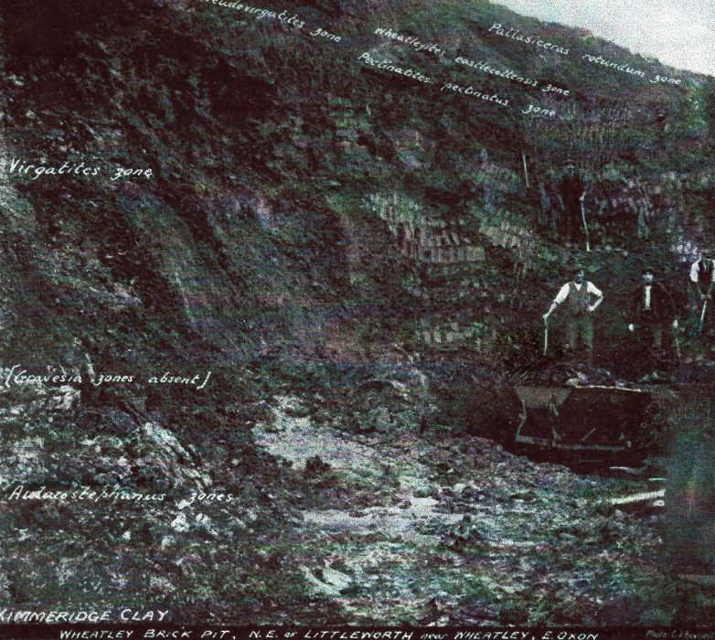 The face of the pit lay behind Cooper's Close and the mobile homes at Littleworth. It is now part of a site of special scientific interest. Here, in 1924, the men are digging out the clay for making bricks. The Littleworth brickworks were operational here from 1892 to 1939. First owned by the Cooper family, who had transferred the works from the grounds of their house in Kiln Lane and later owned by London brick company.