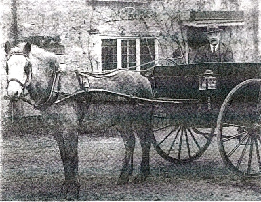 Date not known. Horse and cart with, possibly, a member of the Shepherd family.
