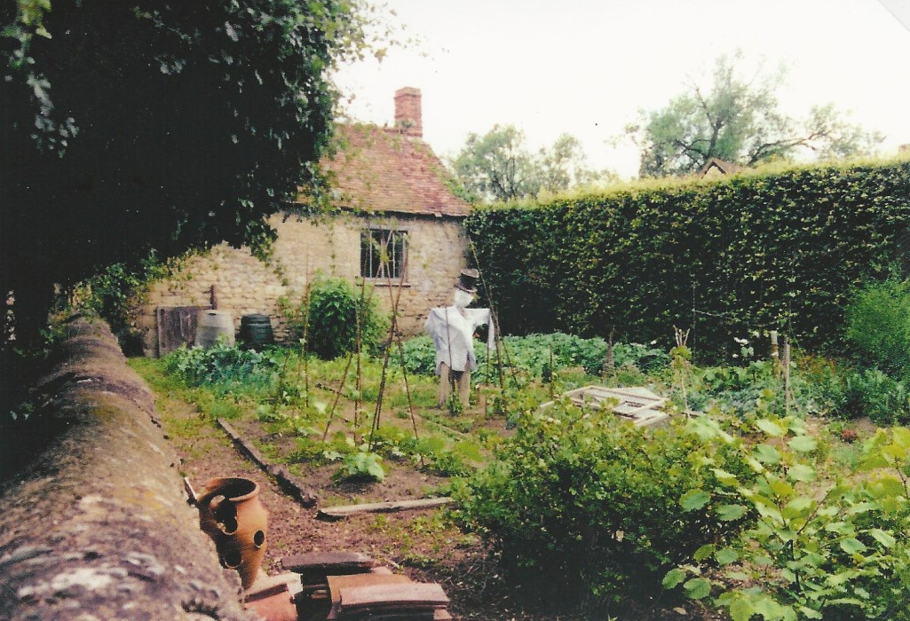 Kitchen garden at the Manor House