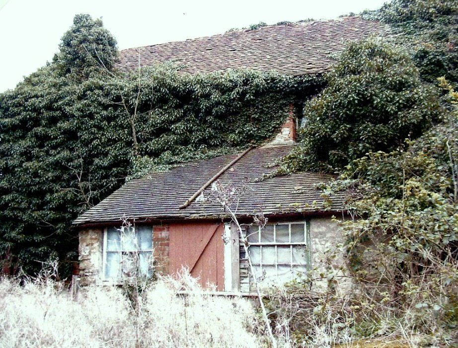 2005 when the house was derelict