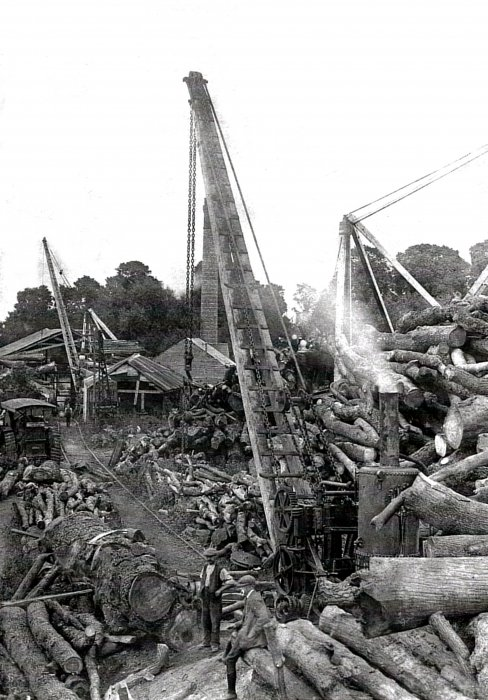 "c. 1920. Early view of Avery's timber yard with Harry Avery seated in the foreground. Standing is Bill Claydan (""Whiskey"") who lived in Denton and worked the crane."